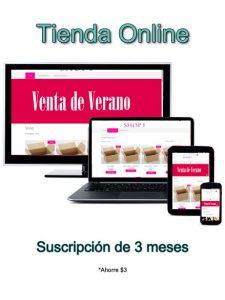 Tienda Online (3 meses)